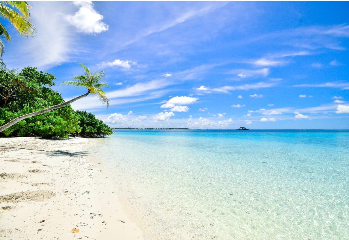Luxury Corporate Business Vacation on a Tropical Beach