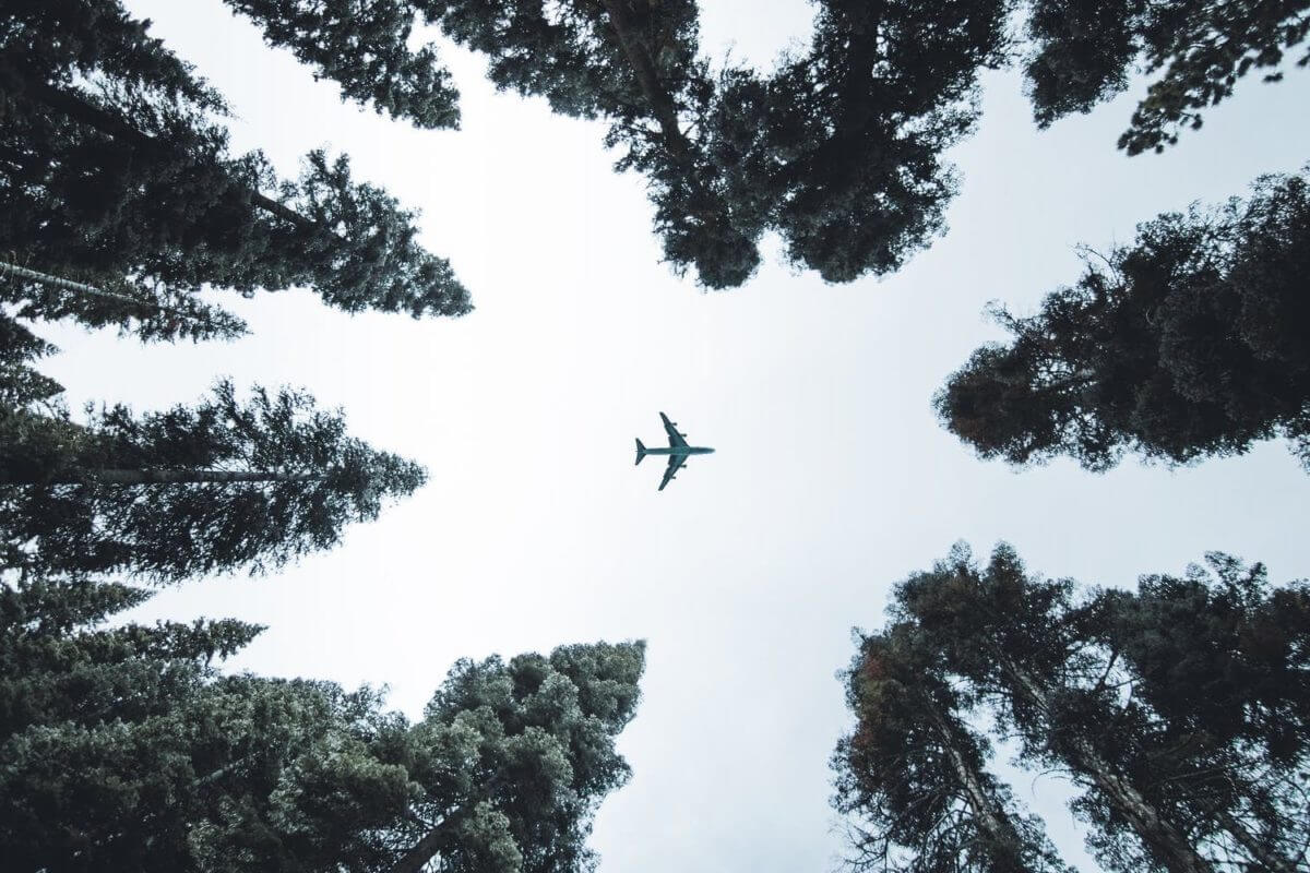 Sustainable Business Travel - Green Corporate Travel